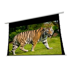 "EluneVision 100"" (49x87) 16:9 Reference Studio Tab-Tensioned In-Ceiling Screen 4K+ 1.0 Gain Projector Screen - EV-TIC-100-1.0"