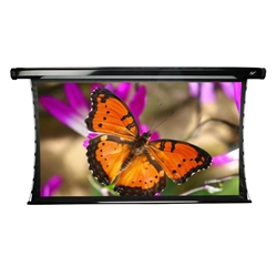 "CineTension2 Series 120"" Diag. (59x105) Electric Projector Screen, HDTV Format, WraithVeil Fabric"